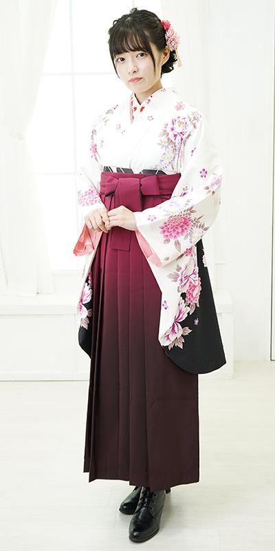 【着物】白にボタンラメ刺繍+【袴】ワインボカシ