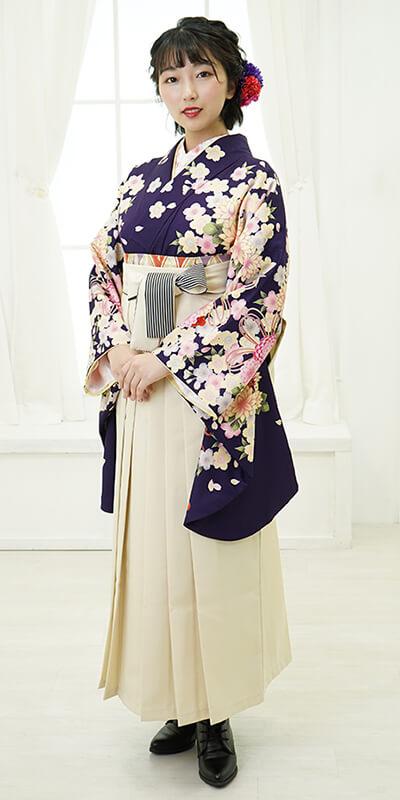 【着物】ムラサキ束ね菊・桜+【袴】クリームひも縞