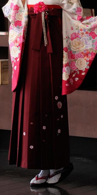 袴:赤・エンジ友疋田桜