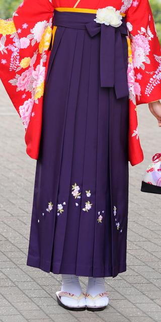 袴:ムラサキシシュウ