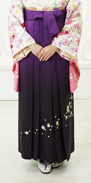 袴:ムラサキボカシシシュウ